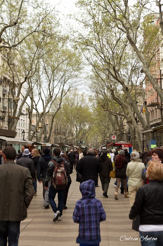 Barcelona ziua 2 La Rambla © Codrin Anton FOTOGRAF – www.CodrinAnton.ro