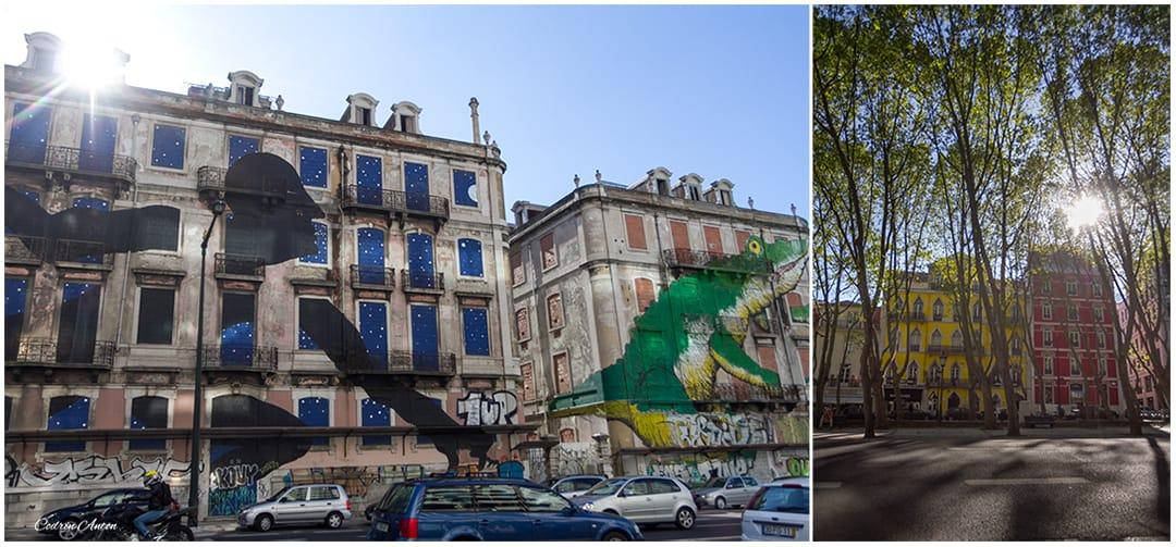 Primavara in Lisabona aprilie 2014 © Codrin Anton FOTOGRAF – www.CodrinAnton.ro