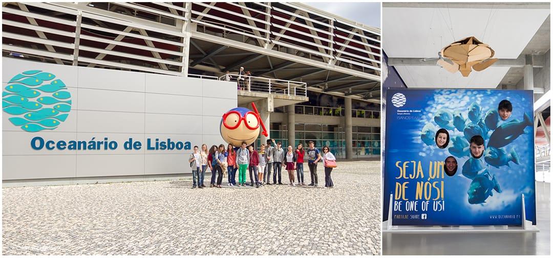 Primavara in Lisabona Oceanarium aprilie 2014 © Codrin Anton FOTOGRAF – www.CodrinAnton.ro