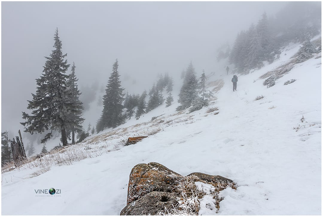 Ceahlau - ianuarie 2015 - Codrin Anton FOTOGRAF -  www.CodrinAnton.ro