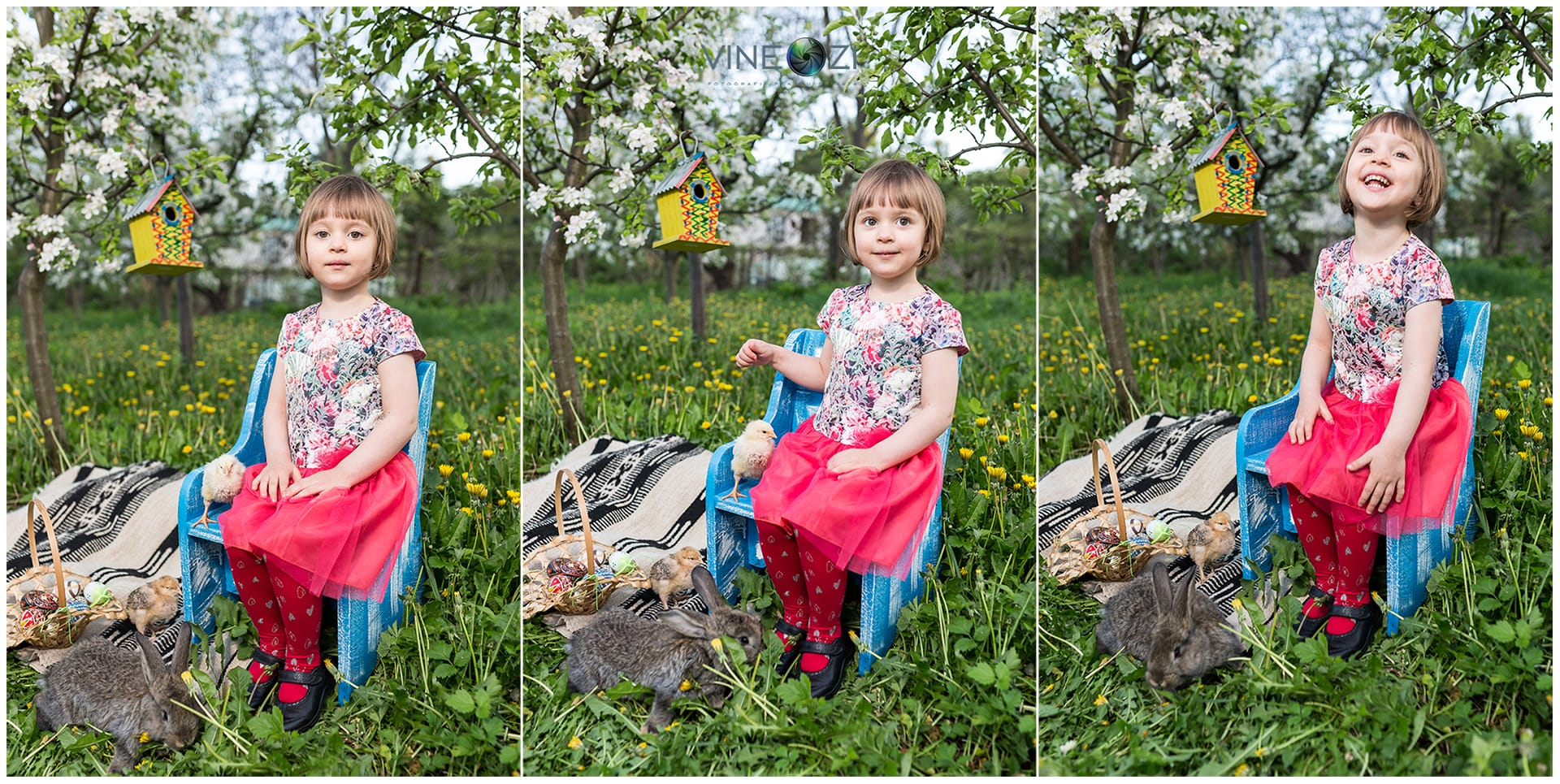 Olivia - Falticeni - aprilie 2016 © Codrin Anton FOTOGRAF – www.VineOZi.ro