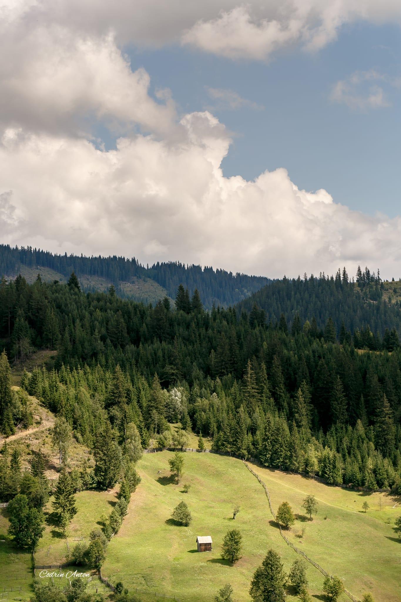 Hai-hui prin Bucovina