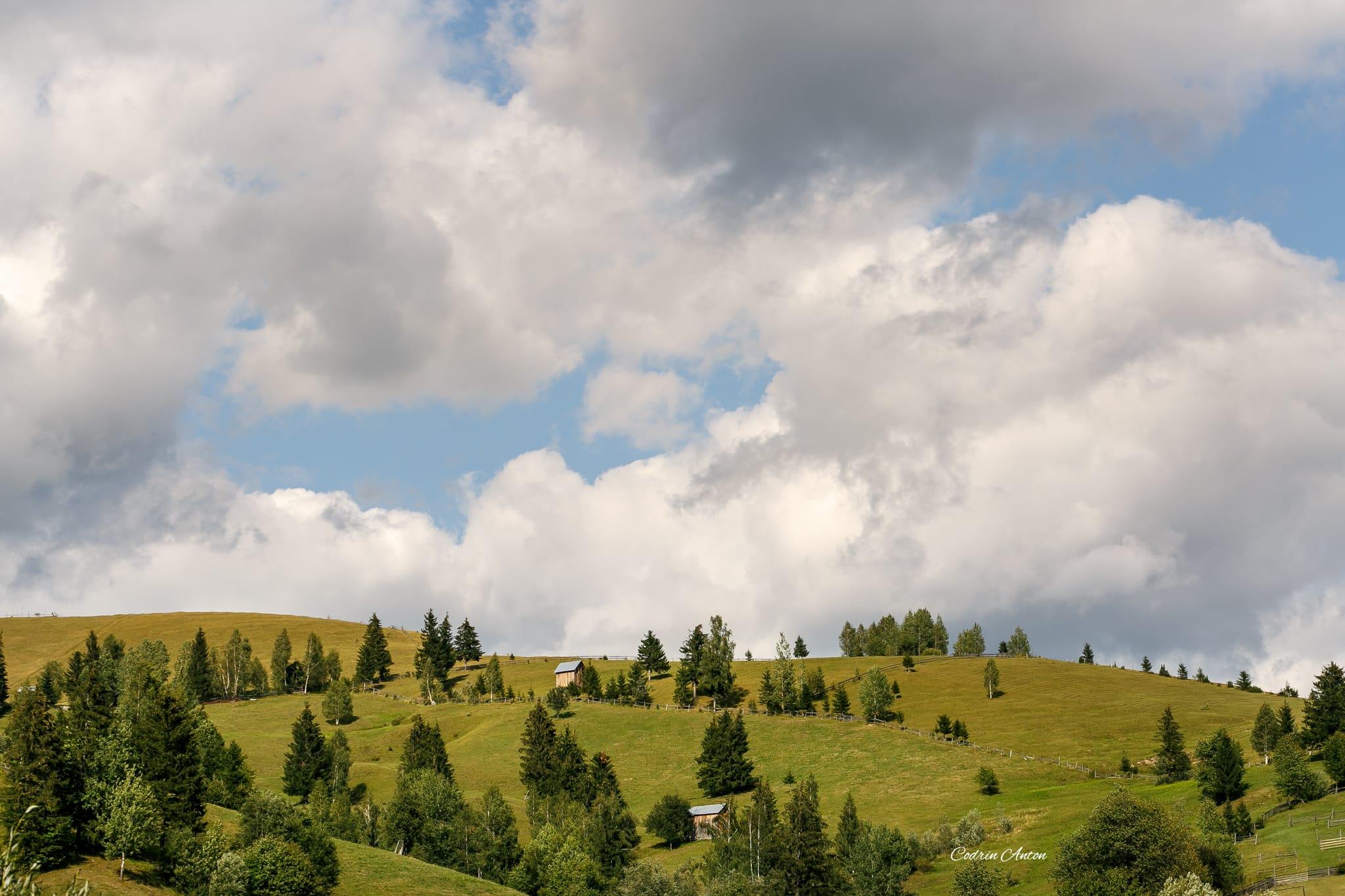 Hai-hui prin Bucovina 17