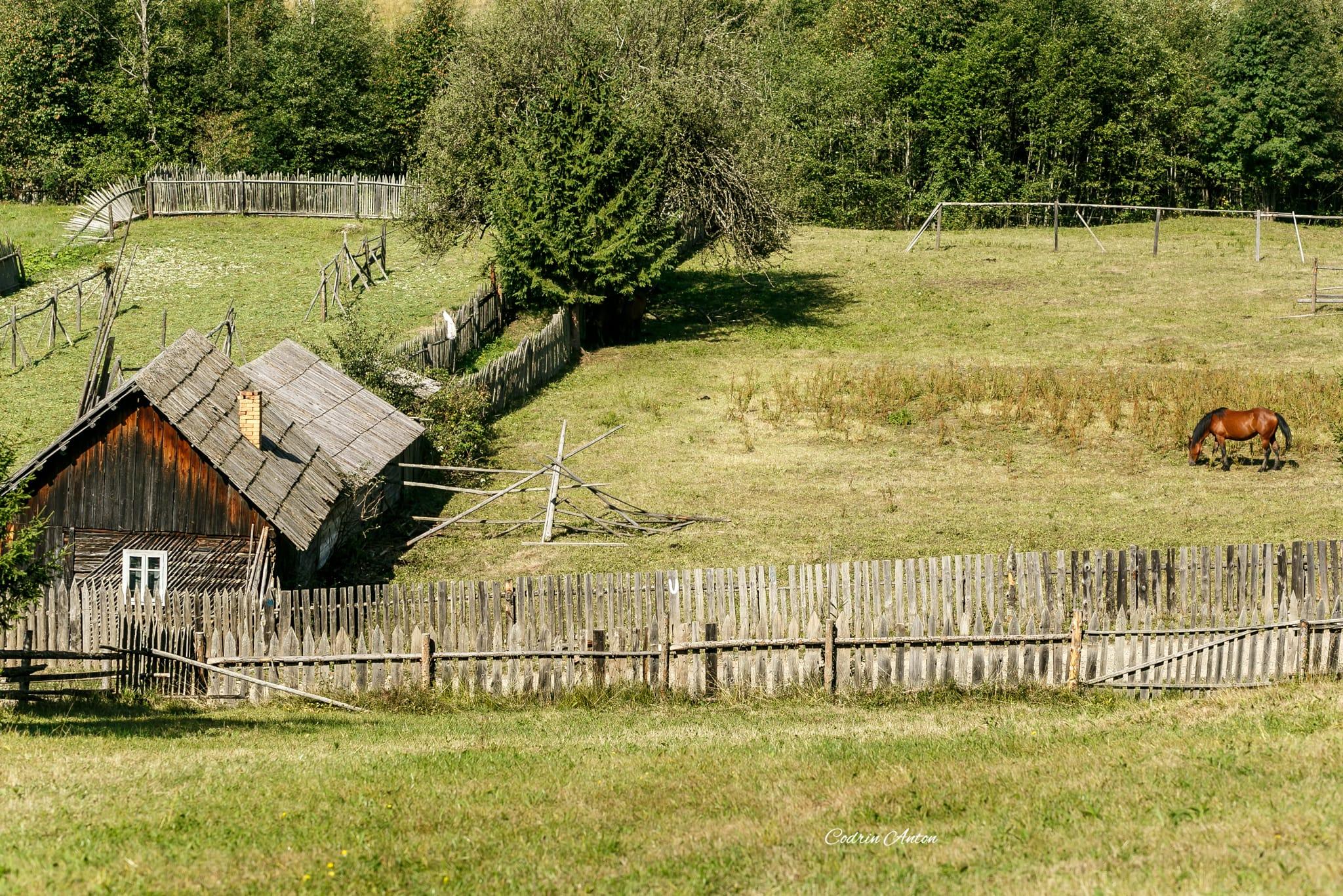 Hai-hui prin Bucovina 16