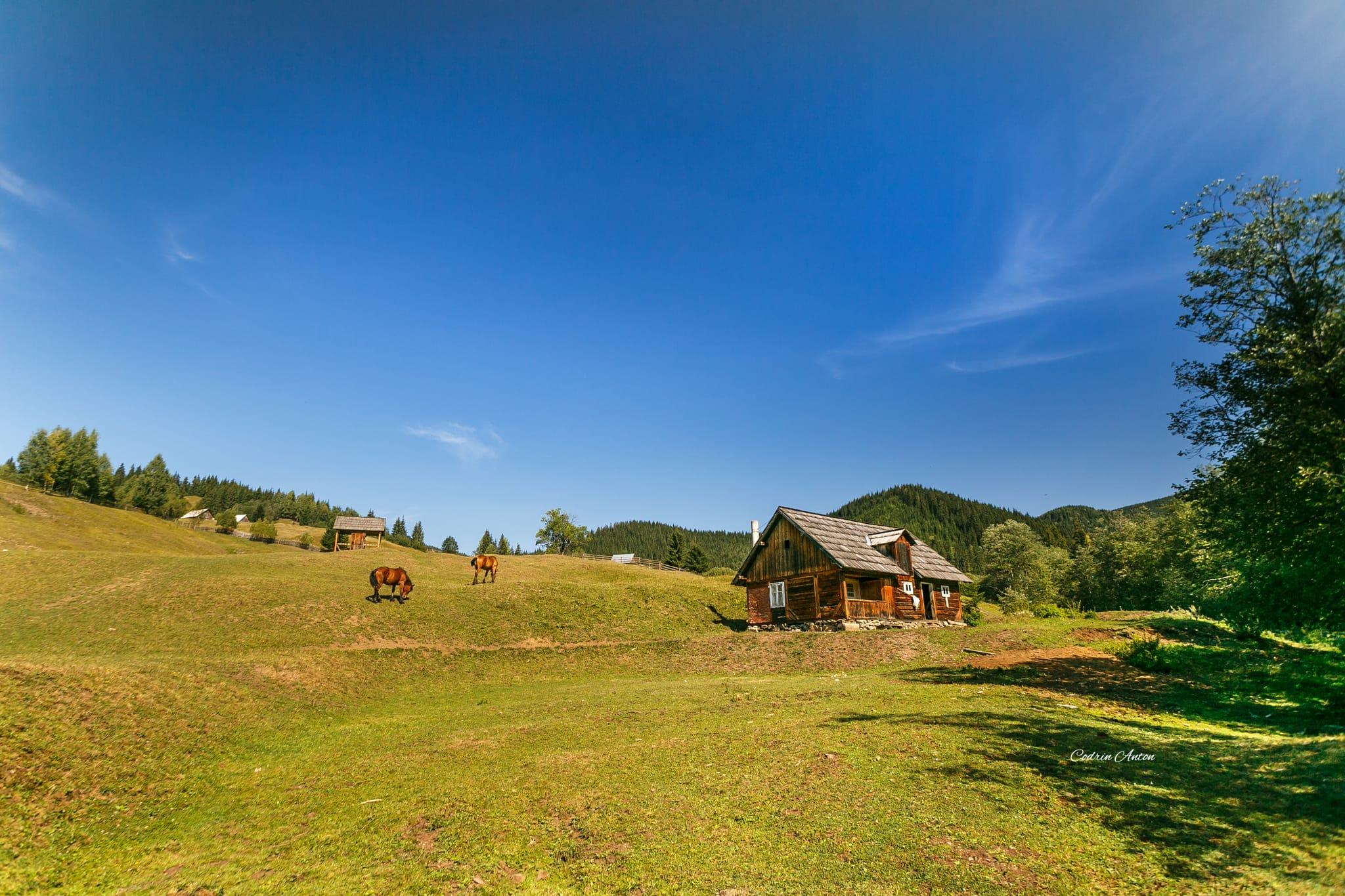 Hai-hui prin Bucovina 15