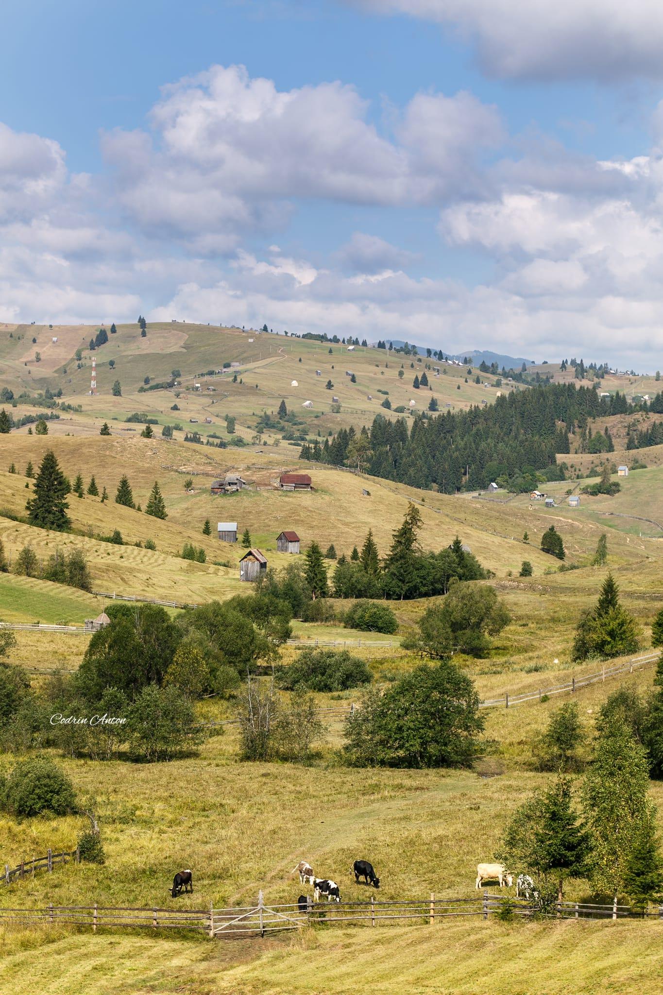 Hai-hui prin Bucovina 12