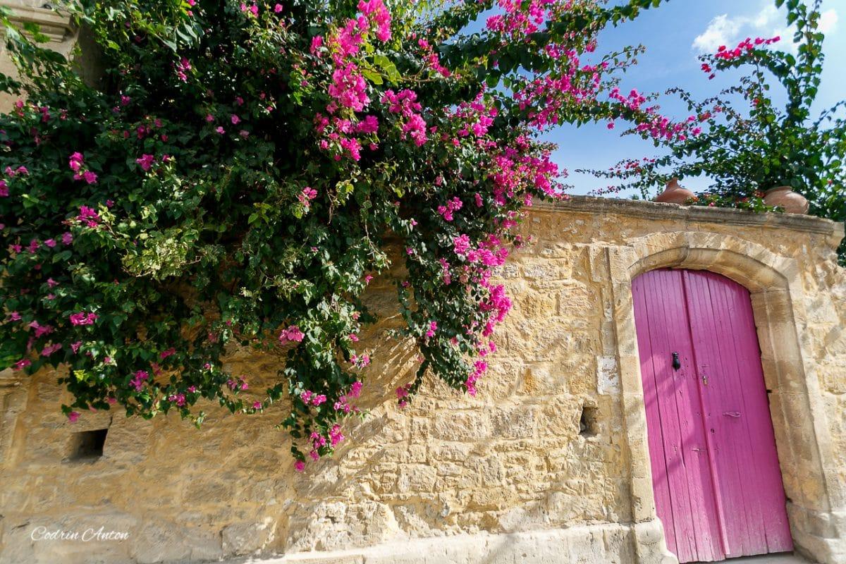 Proiect nou: uşi şi porţi în Nicosia 1